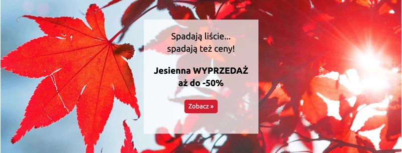 Bon Prix: jesienna wyprzedaż do 50% zniżki na odzież damską, męską i dziecięcą                         title=