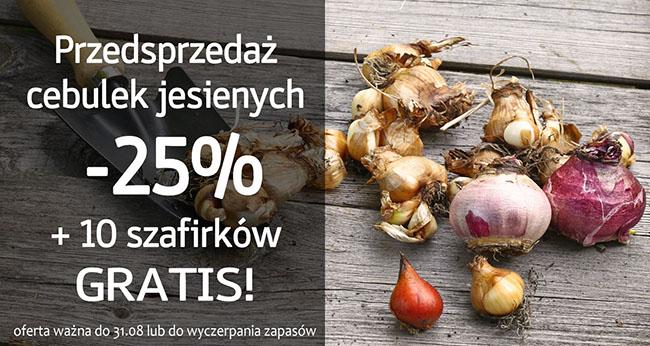 Świat Kwiatów: 25% zniżki na cebulki jesienne