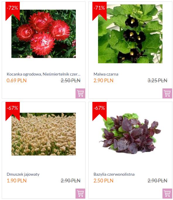 Świat Kwiatów: nawet 70% rabatu na produkty z wyprzedaży