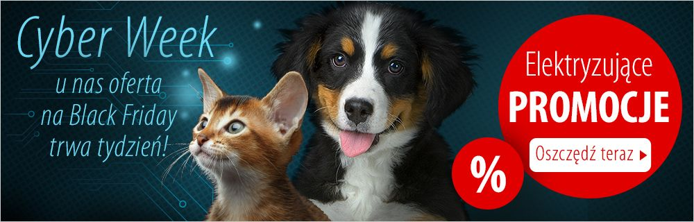 Zooplus Black Week Zooplus: elektryzujące zniżki na karmy i akcesoria dla psa i kota