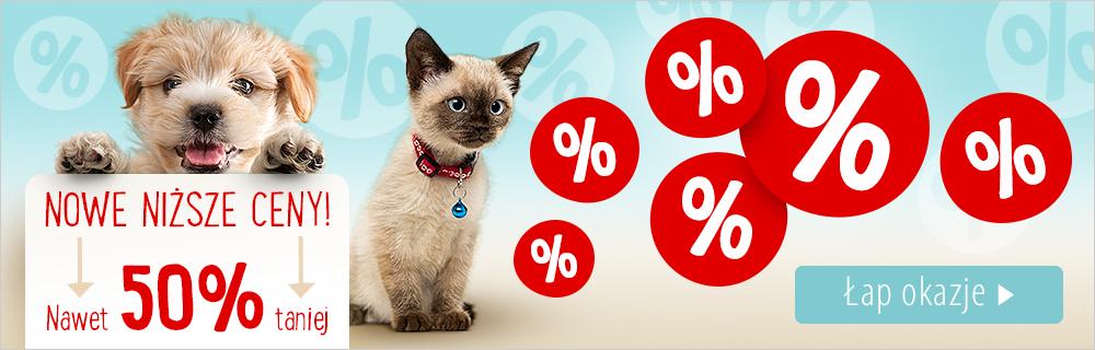 Zooplus: do 50% zniżki na wybrane karmy i akcesoria dla zwierząt                         title=