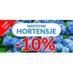 Sadowniczy: 10% rabatu na Hortensje