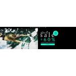 Schaffashoes: start sale wyprzedaż do 60% rabatu na obuwie znanych marek