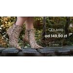 Wittchen: obuwie damskie i męskie od 149,90 zł